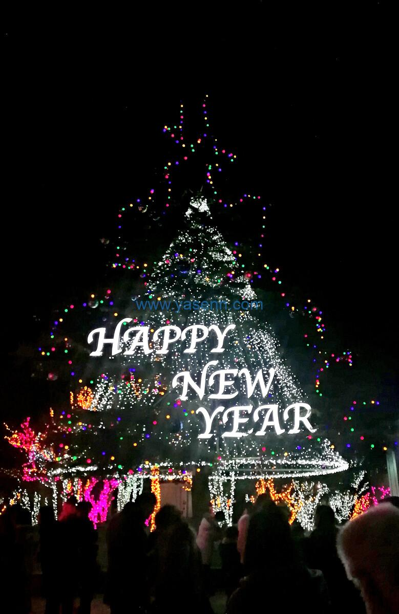 Happy New Year -Welcome to 2021